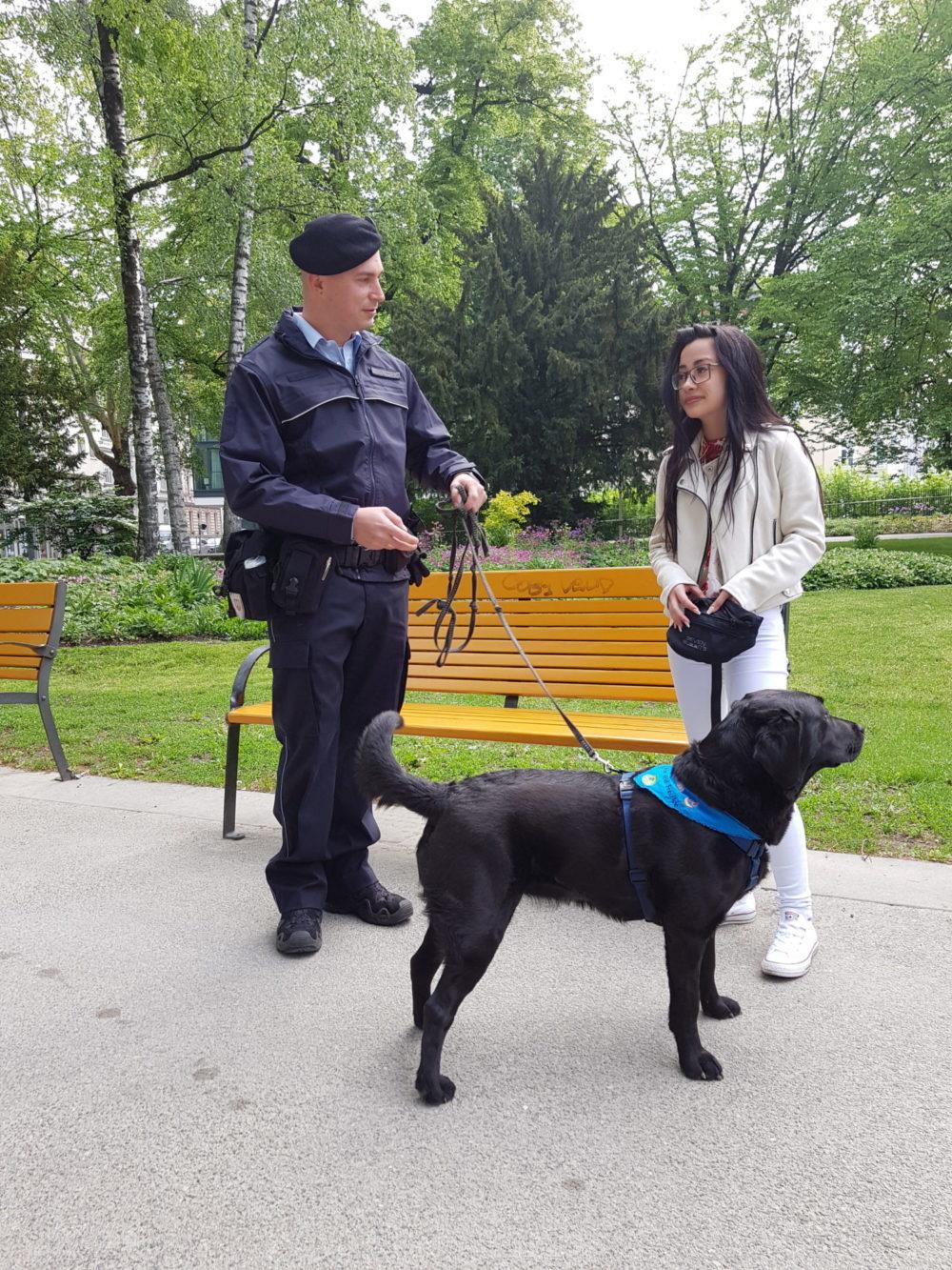 Für Euch im Park – Der OSL'er und die Sache mit den Hunden